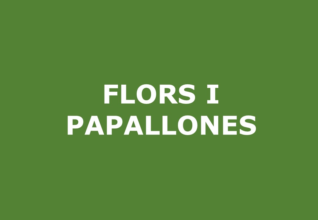 Flors i papallones