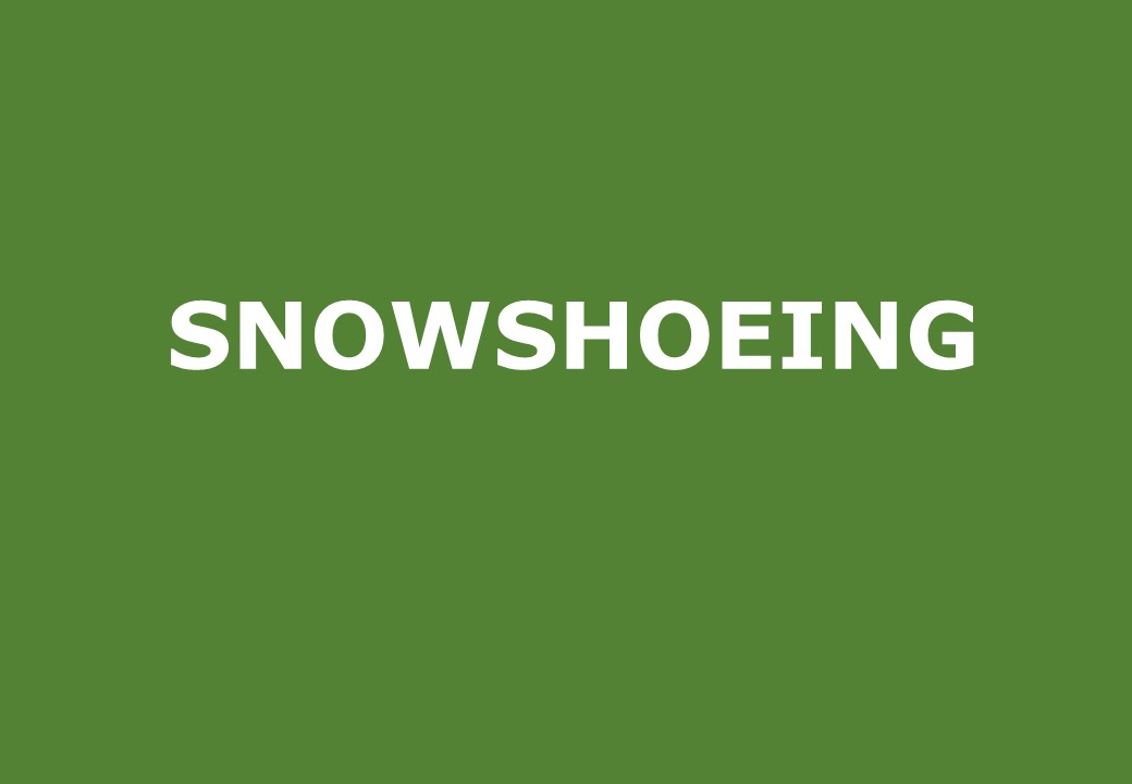 Snowshoeing activities