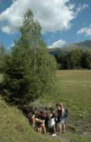 Hiking in the Natural Park of the High Pyrenees